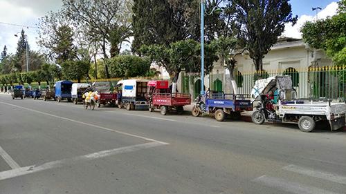جمعية الكرامة لأصحاب الدراجات النارية الثلاثية العجلات تنظم حملة لصباغة الأشجار بشارع مولاي علي بوغالب