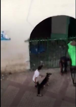 خطير : ما اتقوا الله لا في رمضان و لا في جمعة … مراهقون يهاجمون متشردا بواسطة كلب