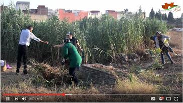 حملة تطوعية لتنظيف مقبرة مولاي علي بوغالب