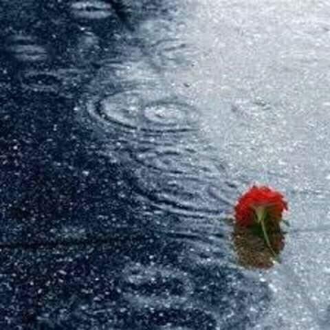 تأخر المطر …غيثك غيثك يا الله