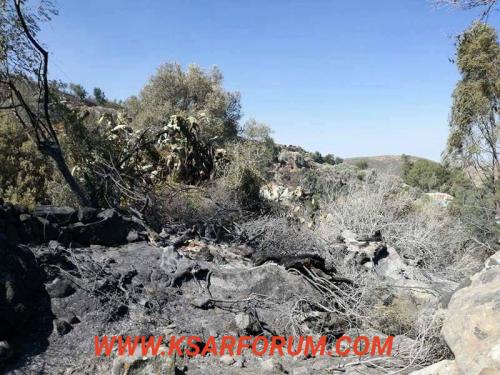 استمرار الحريق بوجديان و النيران تصل ثمانية منازل بدوار الغراف