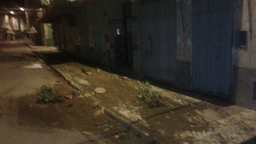 فوضى و تدمير أغراس بمحيط حديقة السلام من طرف غرباء