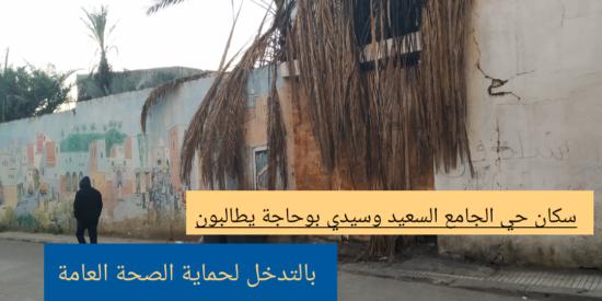 سكان حي الجامع السعيد وسيدي بوحاجة يطالبون بالتدخل لحماية الصحة العامة