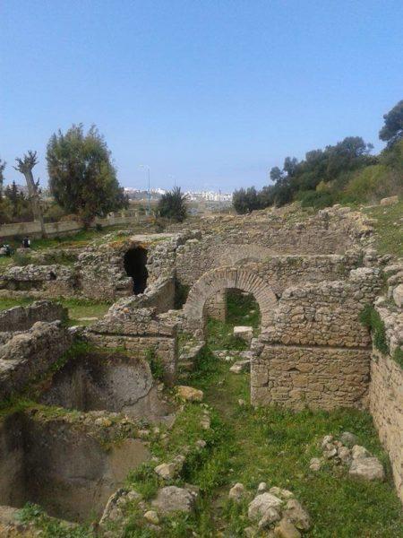قريبا …افتتاح موقع ليكسوس الاثري في وجه الزوار