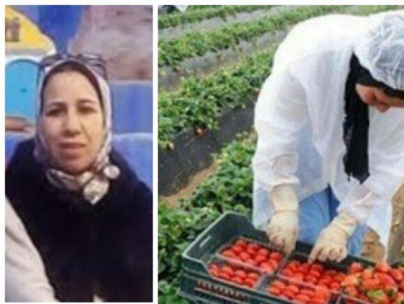 سرديات : تمرد عاملة الفراولة …