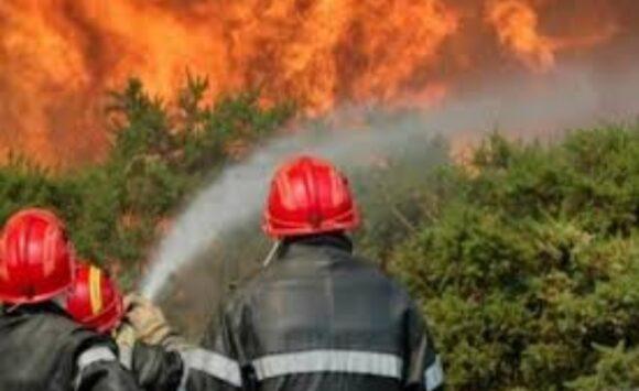 حريق بوهاشم : ألسنة النيران تتحدى الجميع …